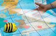 Bee Bot priesvitná (transparentná) podložka -  ITSGRIDBB