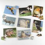 Puzzle divé zvieratá 2 - EY05138BB