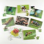 Puzzle mini zvieratá - EY05139BB