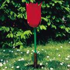 Kvet tulipánu (Tulipa gesneriana) - 1017832B3
